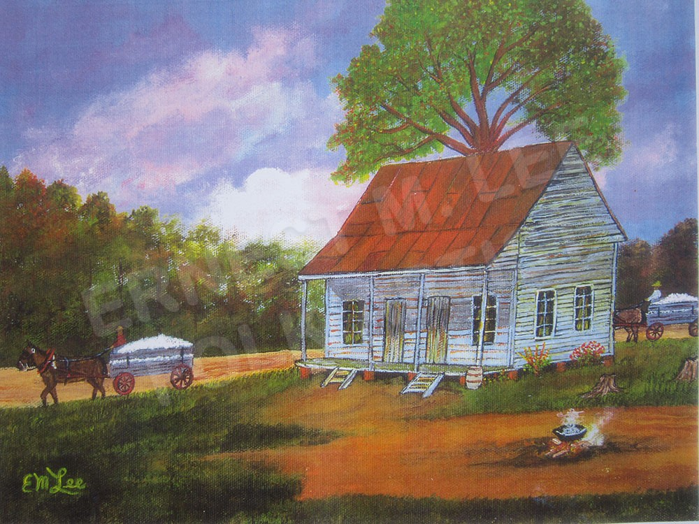 THE COTTON FARM