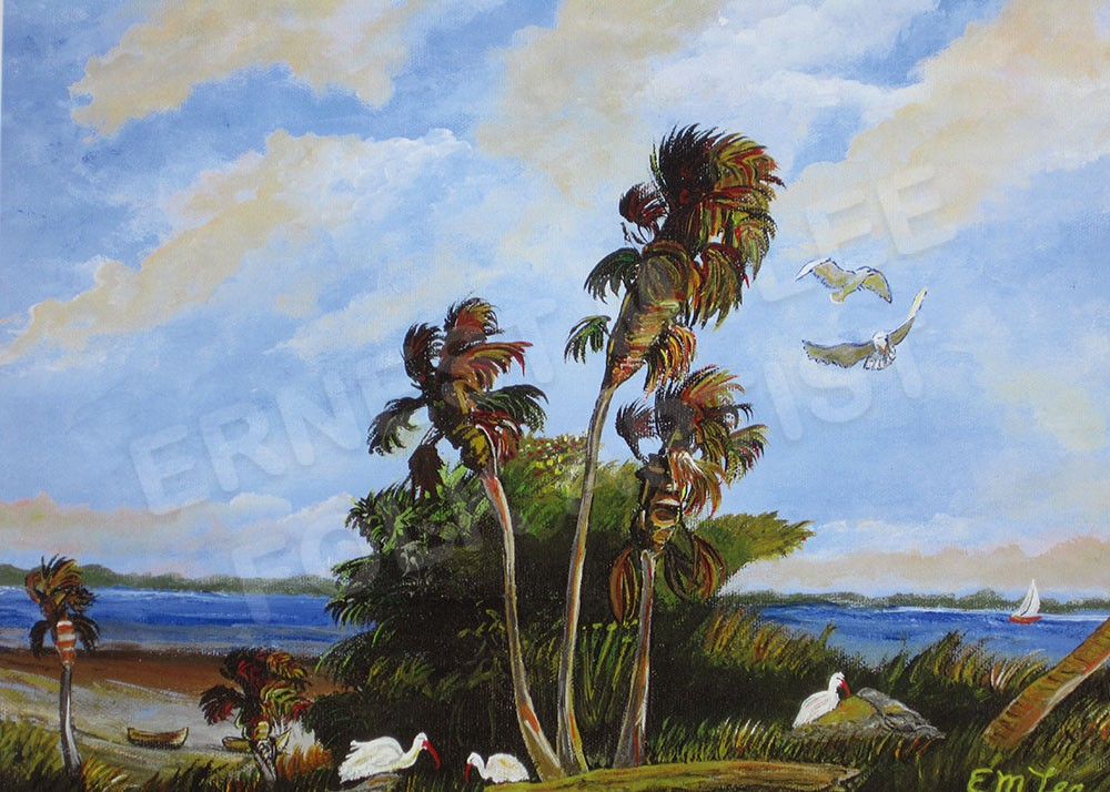 Palms and Seagulls
